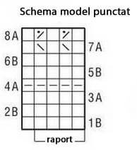 schema model punctat